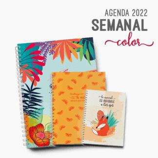 Agenda-2022-Semanal-Agenda-Semana-a-la-vista-2022-A5-A4-Pocket-Color-Alestra-Ediciones